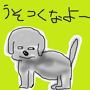 Cocolog_oekaki_2011_01_01_12_17