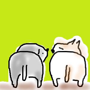 Cocolog_oekaki_2015_12_11_08_29